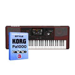Korg Pa1000
